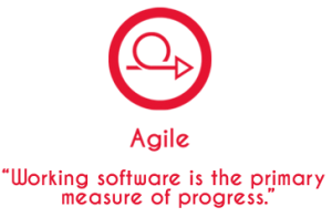 agile_working_software
